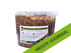 Meelwormen 5l